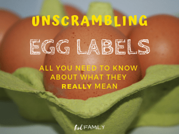 Unscrambling egg labels: all you need to know about what they really mean
