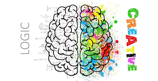 left brain logic and right brain creativity