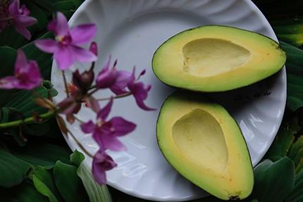 Cut Avocado on a Plate