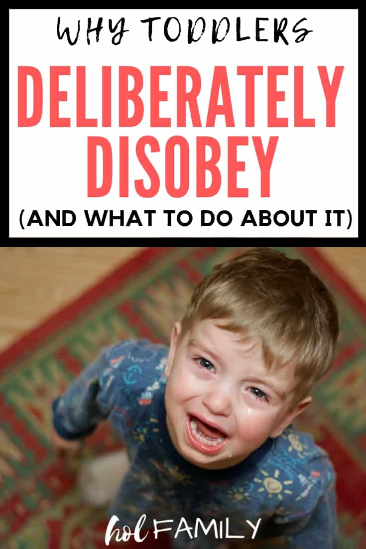 Parenting toddlers can be challenging, especially when they deliberately disobey. Understanding why toddlers act the way they do is the first step in handling challenging toddler behaviors. Check out these 7 reasons why toddlers deliberately disobey and some positive parenting tips and tricks to end challenging behaviors and prevent them from happening in the first place. #parenting #parentingtips #parentingtoddlers #parenting101 #positiveparenting #parentinghacks