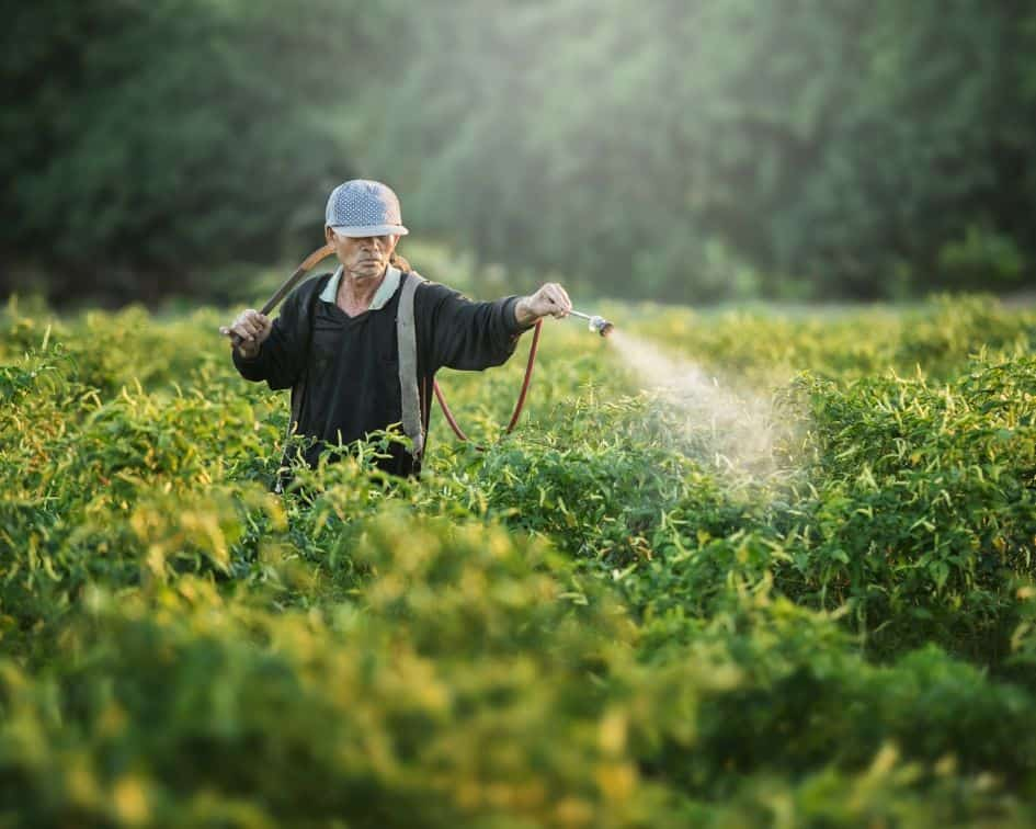 Glyphosate round-up toxic poison sprayed on produce