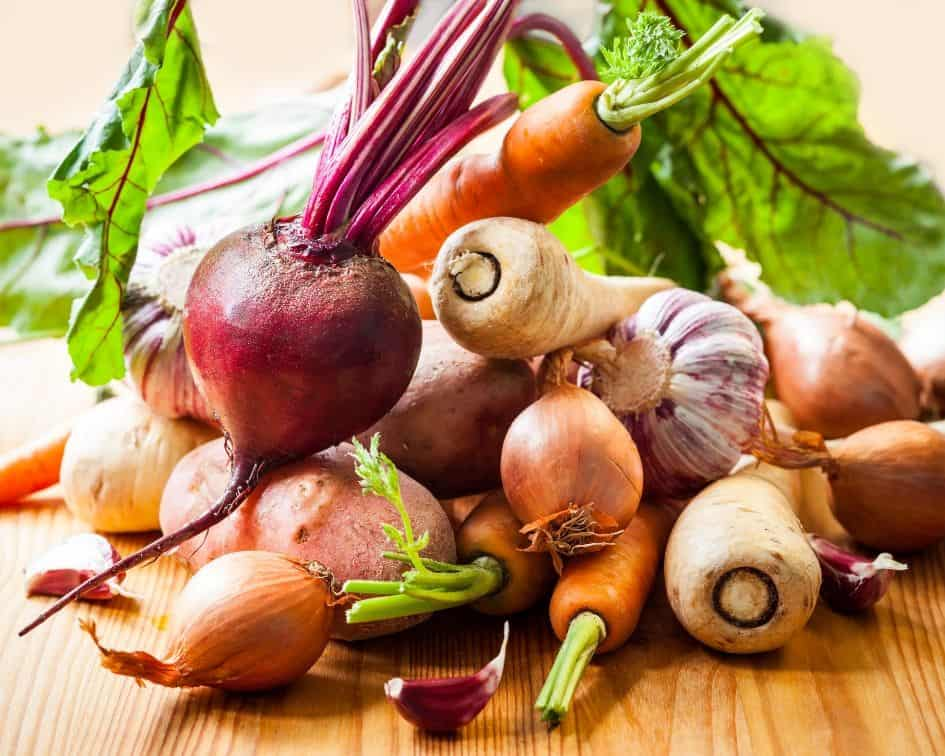 Root vegetables are probiotics
